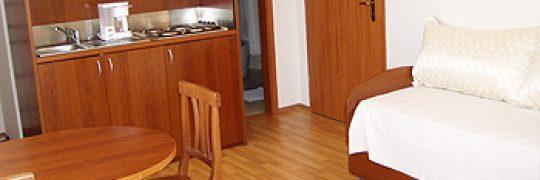 Apartment Svit